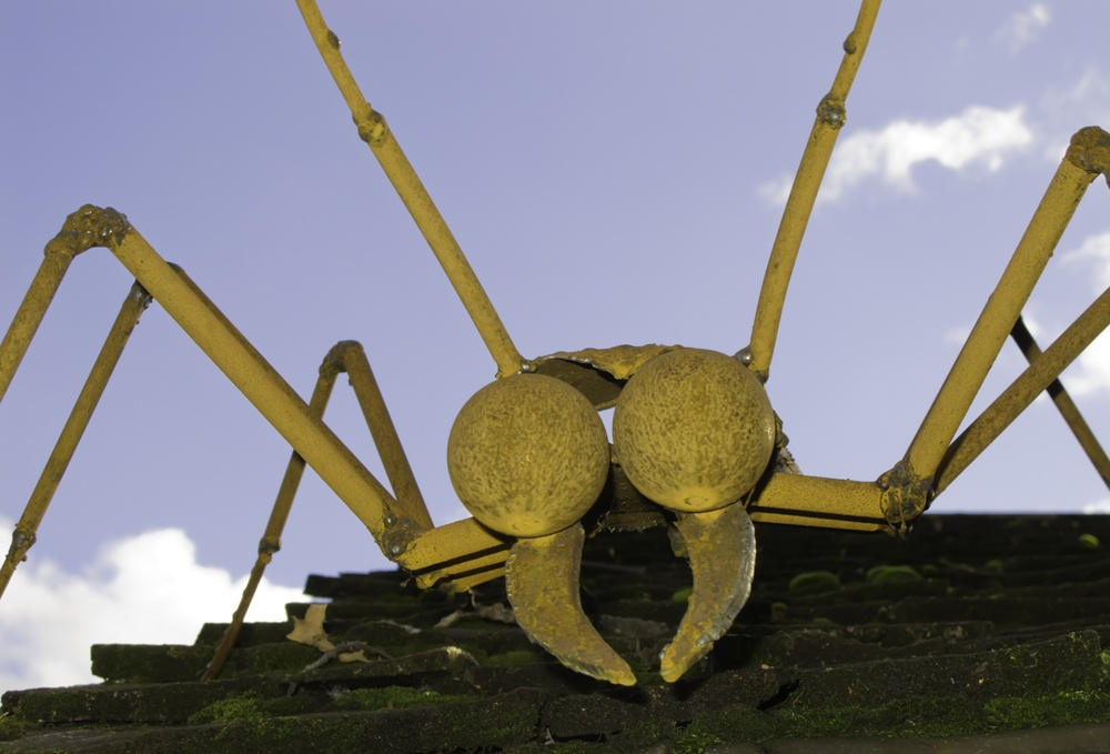 Attack of the killer bug! Artificial crawler on shingled roof of nature center.jpeg